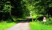 Trail Walk LONGPONT - en forêt de Retz_56_Longpont_tour du Général Mangin_AR - Photo 37