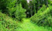Trail Walk LONGPONT - en forêt de Retz_56_Longpont_tour du Général Mangin_AR - Photo 70