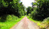 Trail Walk LONGPONT - en forêt de Retz_56_Longpont_tour du Général Mangin_AR - Photo 73
