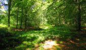Trail Walk LONGPONT - en forêt de Retz_56_Longpont_tour du Général Mangin_AR - Photo 116