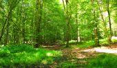 Trail Walk LONGPONT - en forêt de Retz_56_Longpont_tour du Général Mangin_AR - Photo 48