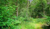 Trail Walk LONGPONT - en forêt de Retz_56_Longpont_tour du Général Mangin_AR - Photo 14