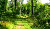 Trail Walk LONGPONT - en forêt de Retz_56_Longpont_tour du Général Mangin_AR - Photo 99