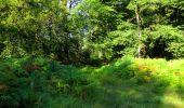 Trail Walk LONGPONT - en forêt de Retz_56_Longpont_tour du Général Mangin_AR - Photo 151