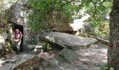 Randonnée Marche NOISY-SUR-ECOLE - pso-170802 - AchèresBéorlots-Potala - Photo 2