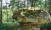 Randonnée Marche NOISY-SUR-ECOLE - pso-170802 - AchèresBéorlots-Potala - Photo 6