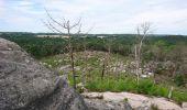 Randonnée Marche NOISY-SUR-ECOLE - pso-170802 - AchèresBéorlots-Potala - Photo 16