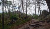 Randonnée Marche NOISY-SUR-ECOLE - pso-170802 - AchèresBéorlots-Potala - Photo 15