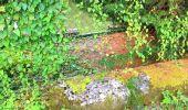 Trail Walk SAINT-JEAN-AUX-BOIS - en forêt de Compiègne_4_le vivier Corax_la Croix St-Sauveur - Photo 9