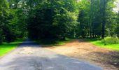 Trail Walk SAINT-JEAN-AUX-BOIS - en forêt de Compiègne_4_le vivier Corax_la Croix St-Sauveur - Photo 48