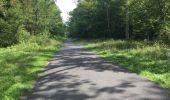 Trail Walk SAINT-JEAN-AUX-BOIS - en forêt de Compiègne_4_le vivier Corax_la Croix St-Sauveur - Photo 57