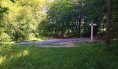 Trail Walk SAINT-JEAN-AUX-BOIS - en forêt de Compiègne_4_le vivier Corax_la Croix St-Sauveur - Photo 34