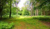Trail Walk SAINT-JEAN-AUX-BOIS - en forêt de Compiègne_4_le vivier Corax_la Croix St-Sauveur - Photo 25