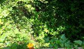 Trail Walk SAINT-JEAN-AUX-BOIS - en forêt de Compiègne_4_le vivier Corax_la Croix St-Sauveur - Photo 27