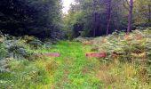 Trail Walk SAINT-JEAN-AUX-BOIS - en forêt de Compiègne_4_le vivier Corax_la Croix St-Sauveur - Photo 15