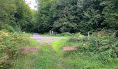 Trail Walk SAINT-JEAN-AUX-BOIS - en forêt de Compiègne_4_le vivier Corax_la Croix St-Sauveur - Photo 16