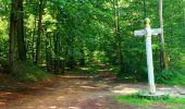 Trail Walk SAINT-JEAN-AUX-BOIS - en forêt de Compiègne_4_le vivier Corax_la Croix St-Sauveur - Photo 31