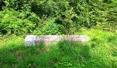 Trail Walk SAINT-JEAN-AUX-BOIS - en forêt de Compiègne_4_le vivier Corax_la Croix St-Sauveur - Photo 50