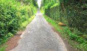 Trail Walk SAINT-JEAN-AUX-BOIS - en forêt de Compiègne_4_le vivier Corax_la Croix St-Sauveur - Photo 10