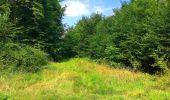 Trail Walk SAINT-JEAN-AUX-BOIS - en forêt de Compiègne_4_le vivier Corax_la Croix St-Sauveur - Photo 55