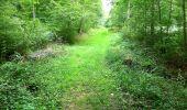 Trail Walk SAINT-JEAN-AUX-BOIS - en forêt de Compiègne_4_le vivier Corax_la Croix St-Sauveur - Photo 19