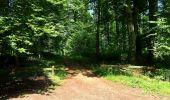 Trail Walk SAINT-JEAN-AUX-BOIS - en forêt de Compiègne_4_le vivier Corax_la Croix St-Sauveur - Photo 44