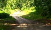 Trail Walk SAINT-JEAN-AUX-BOIS - en forêt de Compiègne_4_le vivier Corax_la Croix St-Sauveur - Photo 32