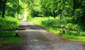 Trail Walk SAINT-JEAN-AUX-BOIS - en forêt de Compiègne_4_le vivier Corax_la Croix St-Sauveur - Photo 47