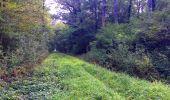 Randonnée Marche LACROIX-SAINT-OUEN - en forêt de Compiègne_35_la Croix Saint-Sauveur_le Ru du Goderu - Photo 107