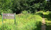 Trail Walk SAINT-JEAN-AUX-BOIS - en forêt de Compiègne_4_le vivier Corax_la Croix St-Sauveur - Photo 30