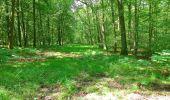Trail Walk SAINT-JEAN-AUX-BOIS - en forêt de Compiègne_4_le vivier Corax_la Croix St-Sauveur - Photo 37