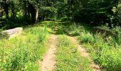 Trail Walk SAINT-JEAN-AUX-BOIS - en forêt de Compiègne_4_le vivier Corax_la Croix St-Sauveur - Photo 28