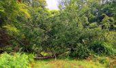 Trail Walk SAINT-JEAN-AUX-BOIS - en forêt de Compiègne_4_le vivier Corax_la Croix St-Sauveur - Photo 23