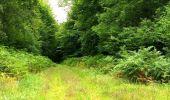 Trail Walk SAINT-JEAN-AUX-BOIS - en forêt de Compiègne_4_le vivier Corax_la Croix St-Sauveur - Photo 20