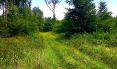 Trail Walk SAINT-JEAN-AUX-BOIS - en forêt de Compiègne_4_le vivier Corax_la Croix St-Sauveur - Photo 39