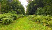 Trail Walk SAINT-JEAN-AUX-BOIS - en forêt de Compiègne_4_le vivier Corax_la Croix St-Sauveur - Photo 21