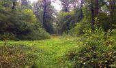 Randonnée Marche LACROIX-SAINT-OUEN - en forêt de Compiègne_35_la Croix Saint-Sauveur_le Ru du Goderu - Photo 1