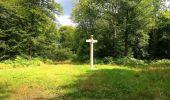 Trail Walk SAINT-JEAN-AUX-BOIS - en forêt de Compiègne_4_le vivier Corax_la Croix St-Sauveur - Photo 26