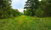 Randonnée Marche LACROIX-SAINT-OUEN - en forêt de Compiègne_35_la Croix Saint-Sauveur_le Ru du Goderu - Photo 96