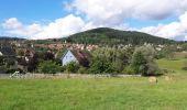 Randonnée Marche GRENDELBRUCH - Le Guirbaden, le plus grand des châteaux forts - Photo 24