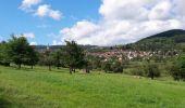Randonnée Marche GRENDELBRUCH - Le Guirbaden, le plus grand des châteaux forts - Photo 21