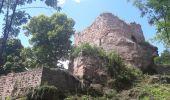 Randonnée Marche GRENDELBRUCH - Le Guirbaden, le plus grand des châteaux forts - Photo 13