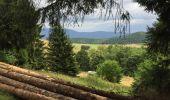 Randonnée Marche nordique GRENDELBRUCH - Col de Bruchberg - Tour du Petit Rosskopf - Photo 1