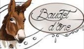 Trail Equestrian Libramont-Chevigny - Circuit 5 - Lambermont, dernier conducteur de diligence - Photo 24