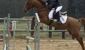 Trail Equestrian Libramont-Chevigny - Circuit 5 - Lambermont, dernier conducteur de diligence - Photo 25