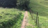 Randonnée Marche Visé - Etangs de la Julienne - Argenteau - Photo 5