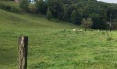Trail Walk Visé - Etangs de la Julienne - Argenteau - Photo 4