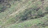 Randonnée Marche STOSSWIHR -  68 Sentier des roches - Photo 5