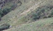 Randonnée Marche STOSSWIHR -  68 Sentier des roches - Photo 4