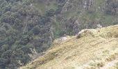 Randonnée Marche STOSSWIHR -  68 Sentier des roches - Photo 2
